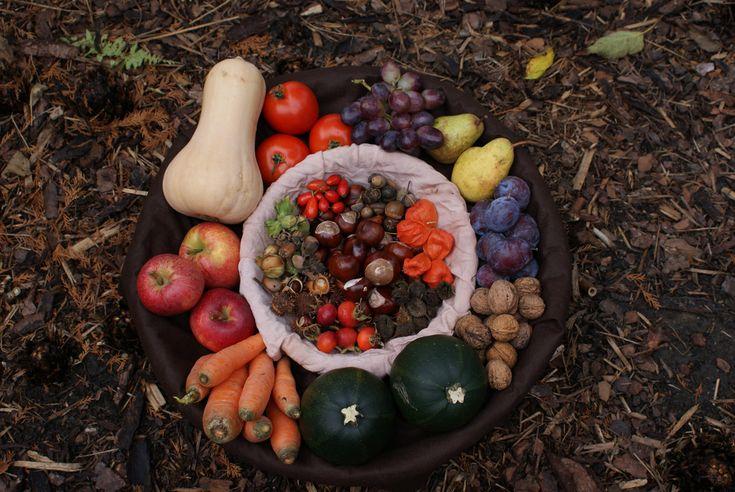 Jaké potraviny byste si na podzim (ne)měli dopřát?