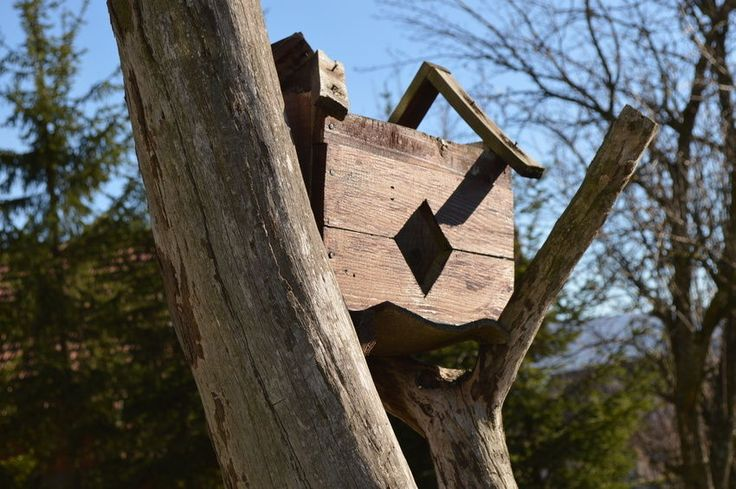 How to Build a Hummingbird House Bird house, Hummingbird