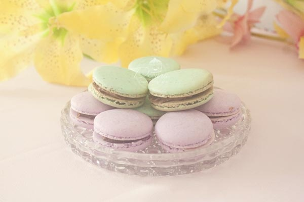 pastel macarons
