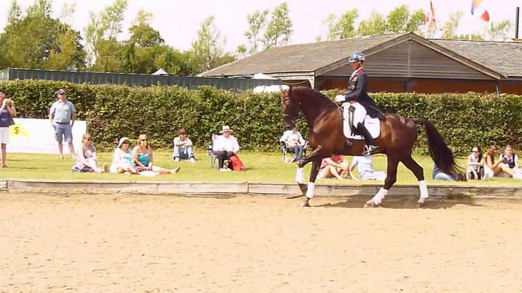 Carl Hester ( Great Britain). Hickstead 2014 - Warm up, basic gaits, posting/rising trot