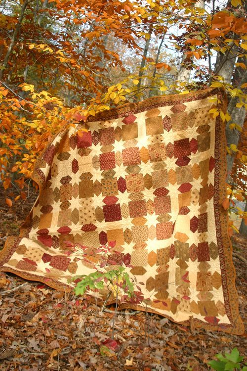 Morning Star Quilt from the Celebrate Creativity blog. Gorgeous This is perfect for a fall quilt for our room! Love the deeper hued blocks