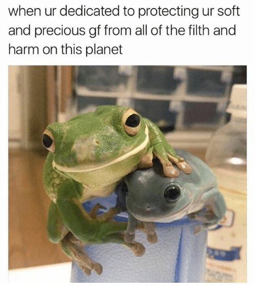 780953a12a377f0ff0b3b7ee354cf882 23 best wholesome memes for my person images on pinterest