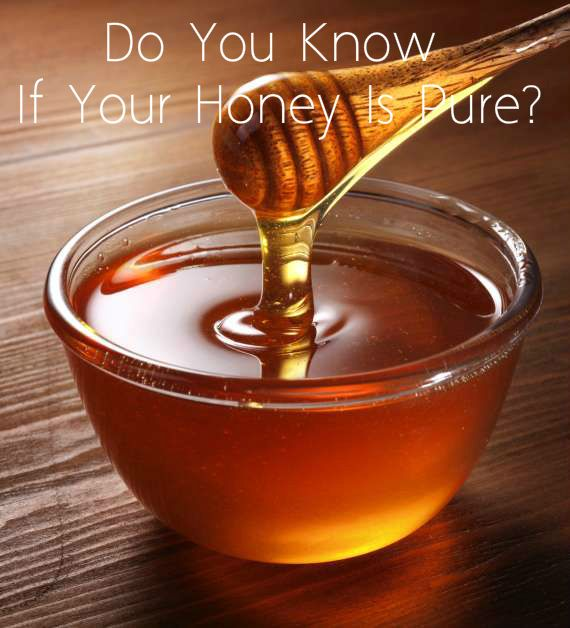 Fake Honey In Stores – Learn How To Identify The Real Thing
