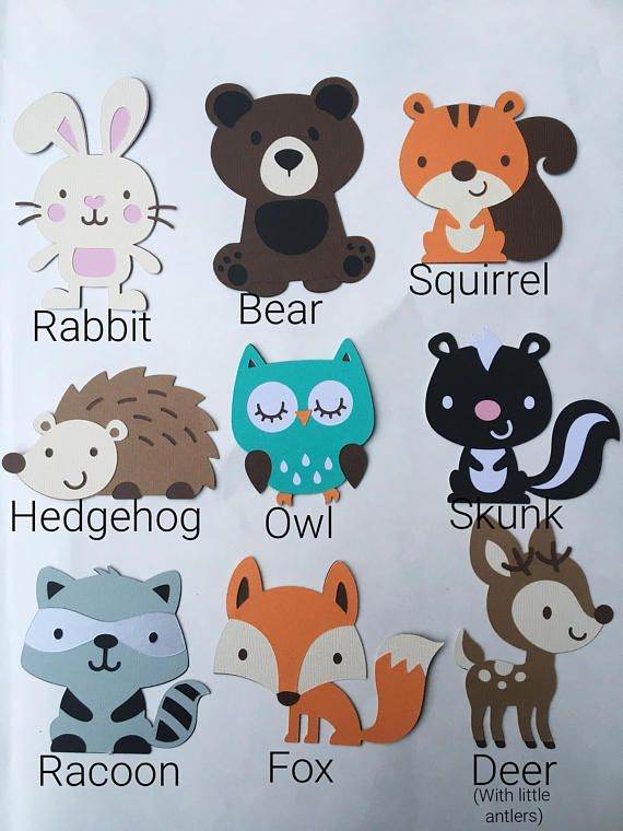 """Customized fox deer woodland animal forest themed baby """"its a boy"""" banner decoration, woodland critters decoration, woodland theme baby name banner, customized baby banner woodland animals theme. Fox, Deer, owl, bunny, squirrel, with red and white mushrooms.woodland critters."""