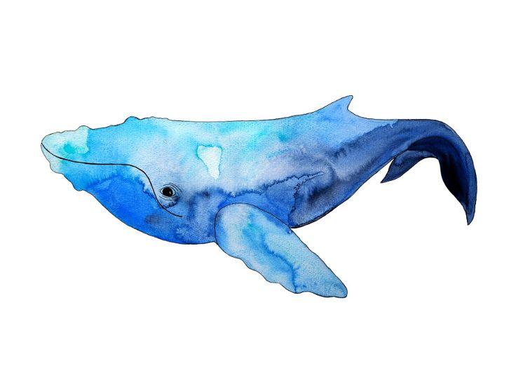 *Wal* Kunstdruck von Frau Ottilie auf DaWanda.com