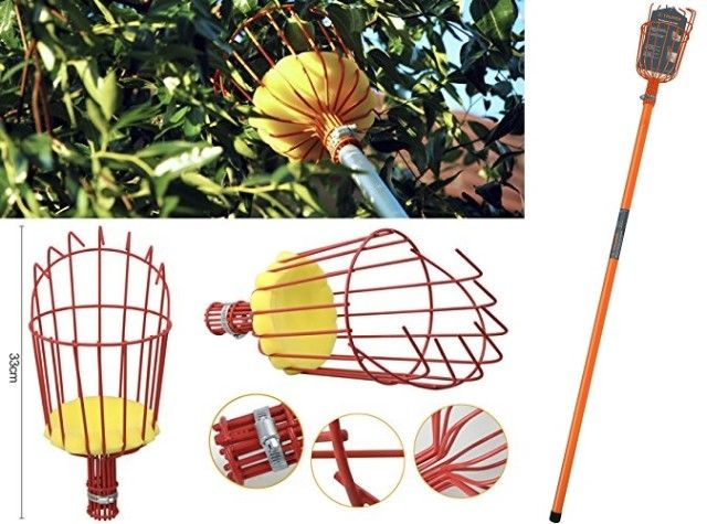 DIY Quick and Easy Fruit Picker