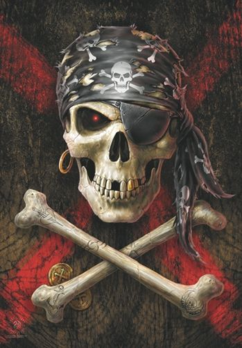 Drapeau ANNE STOKES - Pirate