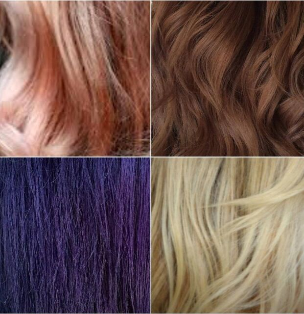 4 new amazing funky hair colors inspired on the latest Hollywood color trends   Peach gold blonde hair color Mocca chocolate brown hair color Dark funky violet hair color Soft beachy gold blonde hair color