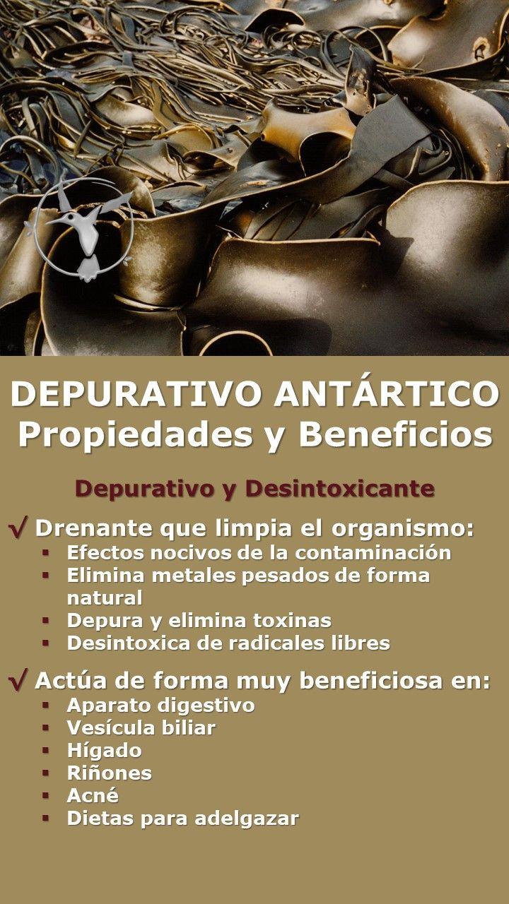 productos para adelgazar herbolarios