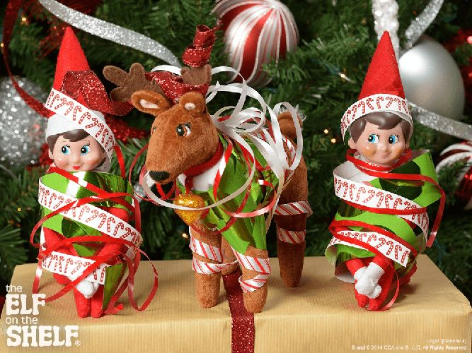 Elf on the Shelf Ideas | Practice Makes Perfect | Elf Pets Reindeer