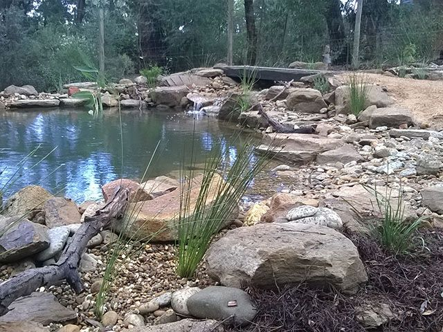 32 best places we visit ontour images on pinterest for Fish ponds sydney
