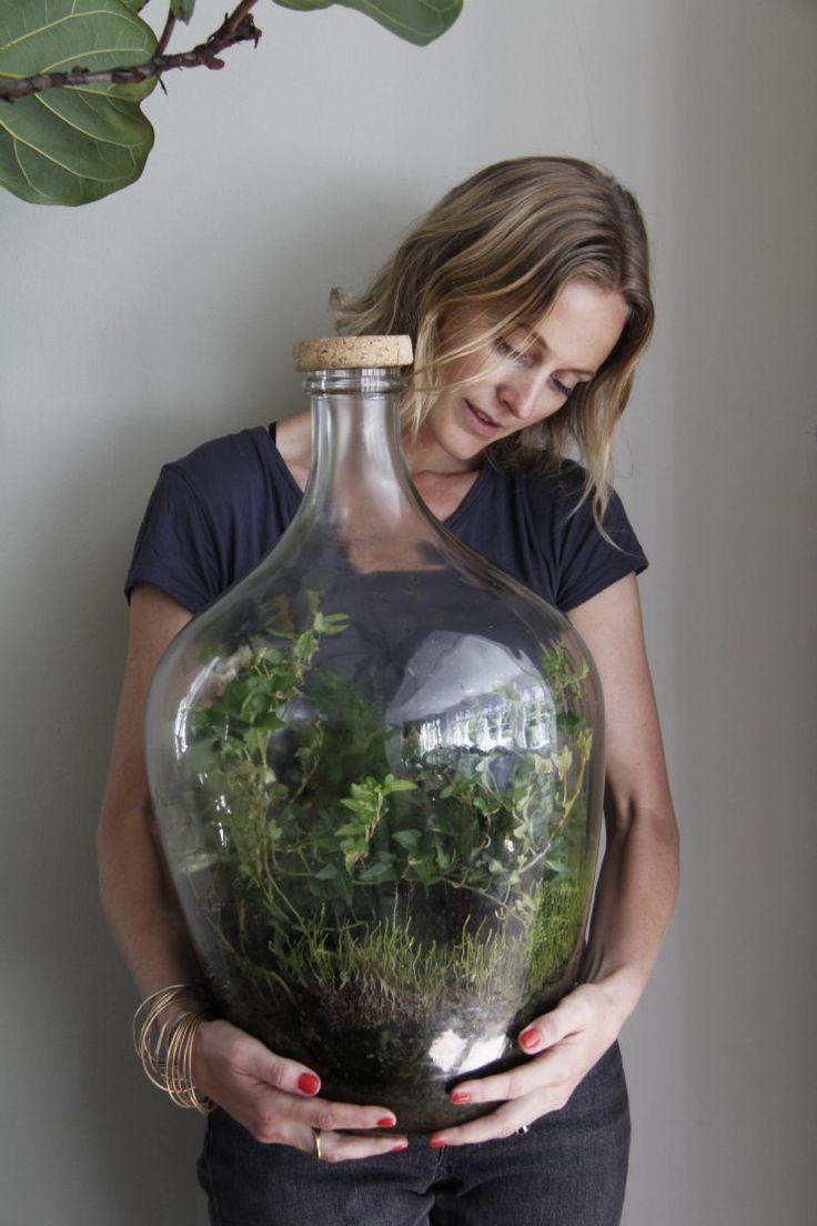 Gillar du gröna växter men känner att du inte hinner med att vattna och ta hand om dom, då är det ett slutet ekosystem du ska satsa på! Behöver aldrig vattnas, det enda du måste se till är...