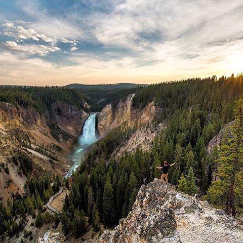 Photo by @elbunt - Location: Yellowstone National Park #thetrickytree