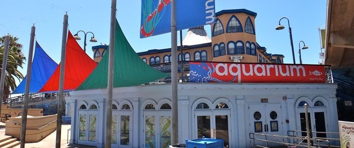 1000 Ideas About Santa Monica Pier Aquarium On Pinterest Santa Monica California Santa