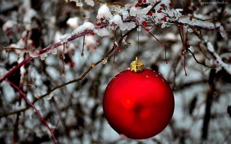 Gałąz, Drzewa, Bombka, Świątecznie, Zima
