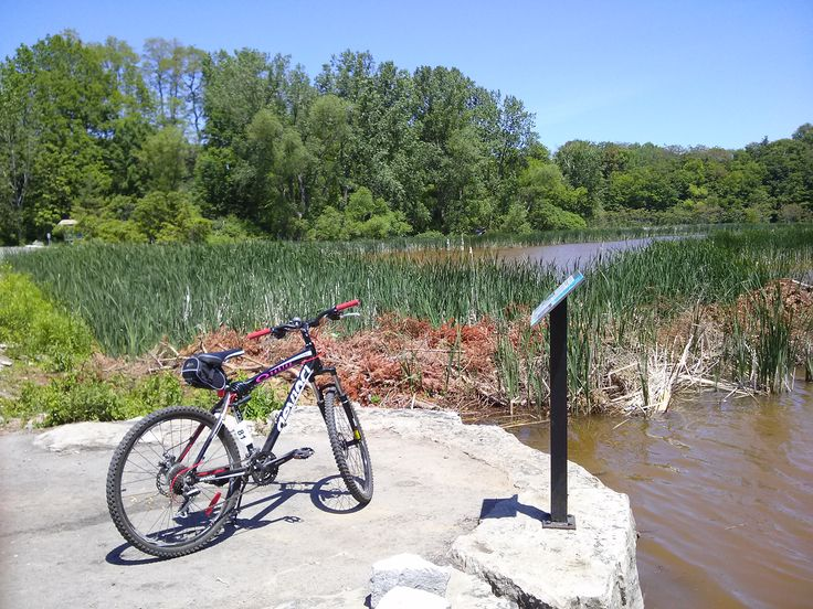 Cycling to the Royal Botanical Gardens