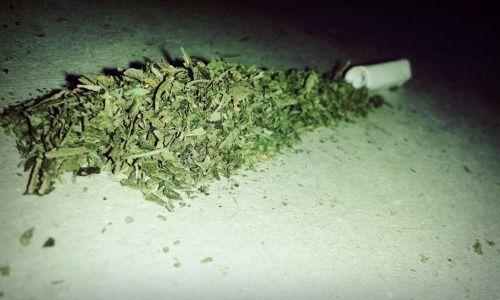 """fumar hierba te revela tu propio yo a ti mismo"" -bob marley"