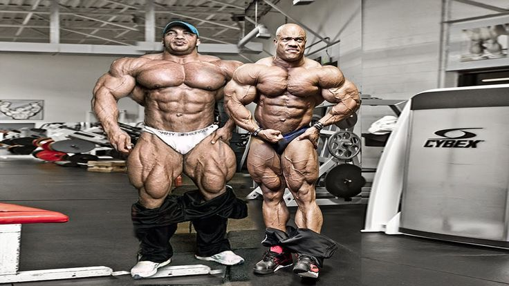 oxygen gym kuwait muscles - Yahoo Image Search Results