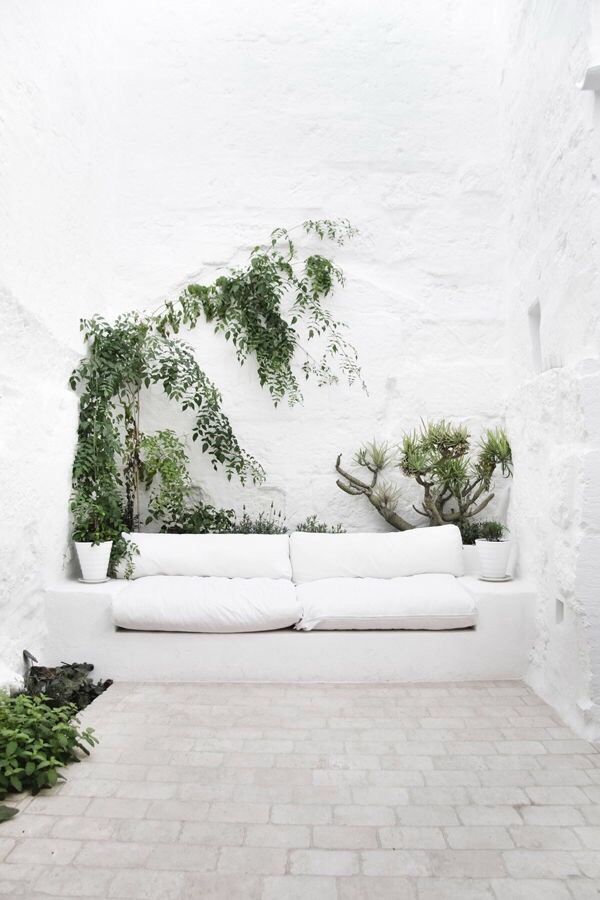 Un univers de blanc pour ce patio méditerranéen. Laisser parler la verdure dan…