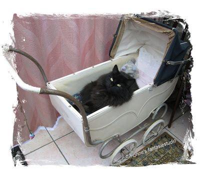 Gaan wandelen met poppenwagen en de kat erin