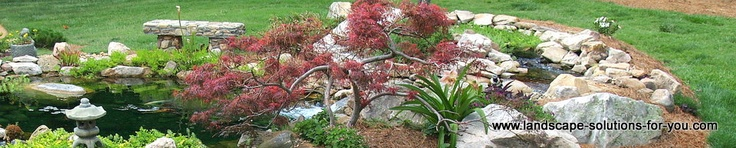 landscape-solutions-for-you.com cool site with info on evergreens