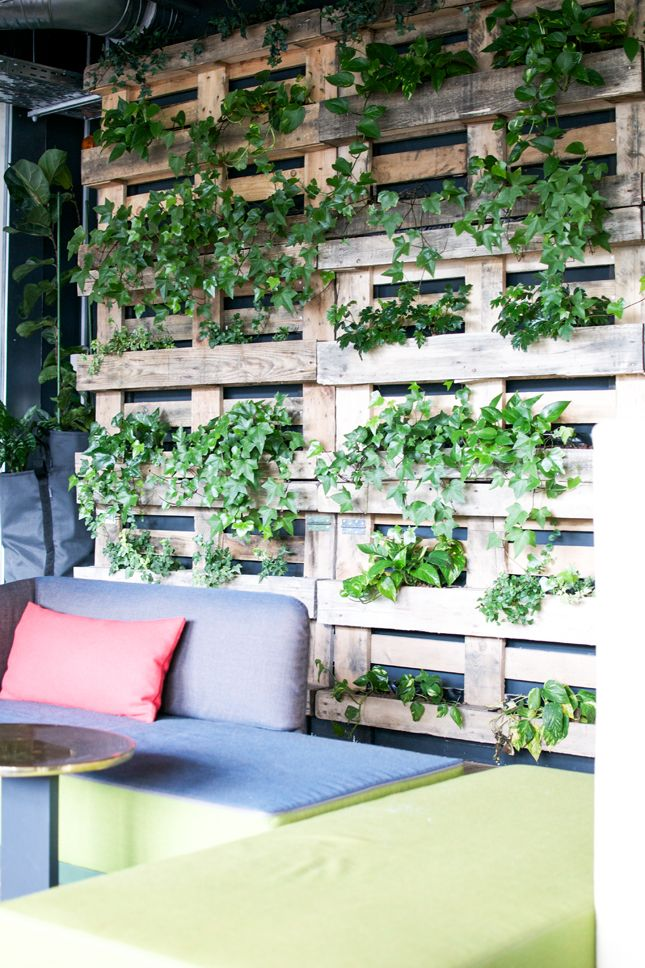 best 25 wall gardens ideas on pinterest vertical garden wall living walls and vertical planting. Black Bedroom Furniture Sets. Home Design Ideas