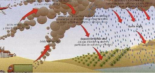 Crónicas de un Mundo en Conflicto - Respecto a la contaminación atmosférica, uno de sus efectos más destructivos es la lluvia ácida