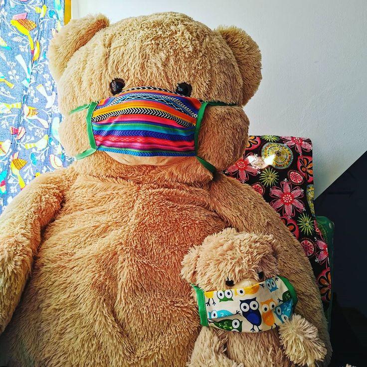 Teddy bear puppies for sale in iowa cheap