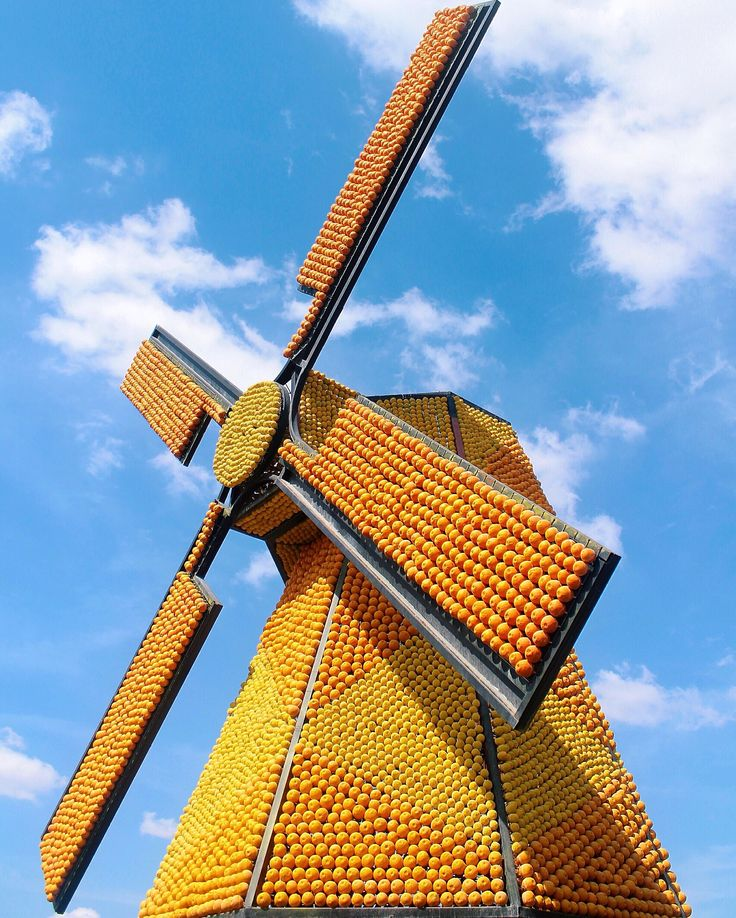 Windmill made out of oranges. Dubai Miracle Garden. January 2016. Photographed by Laura Ghitoi. #OrangeWindmill #DubaiMiracleGarden #ColorfulWindmill