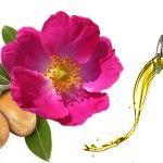 Argán vs Rosa mosqueta