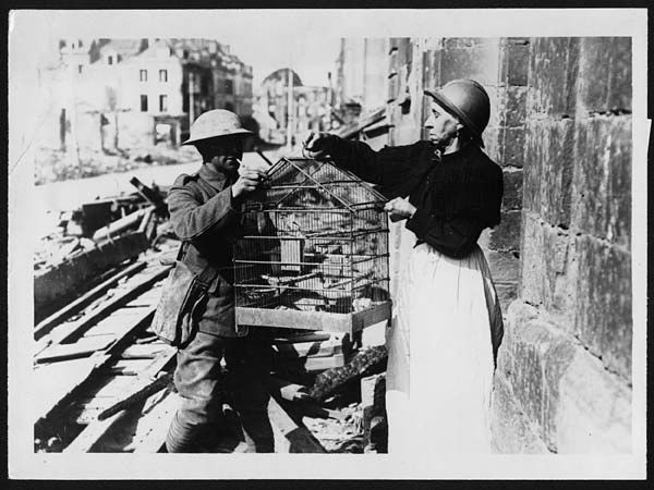 Old Frenchwoman in Amiens evacuating her house leaving her pet canary to the tender mercies of a British Tommy Evacuee from Amiens giving her canary to a British soldier, in France, during World War I. A Frenchwoman – wearing a French military helmet – hands over her pet canary to a British soldier for safekeeping, … #WW1