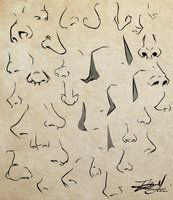 Noses by Kira09kj