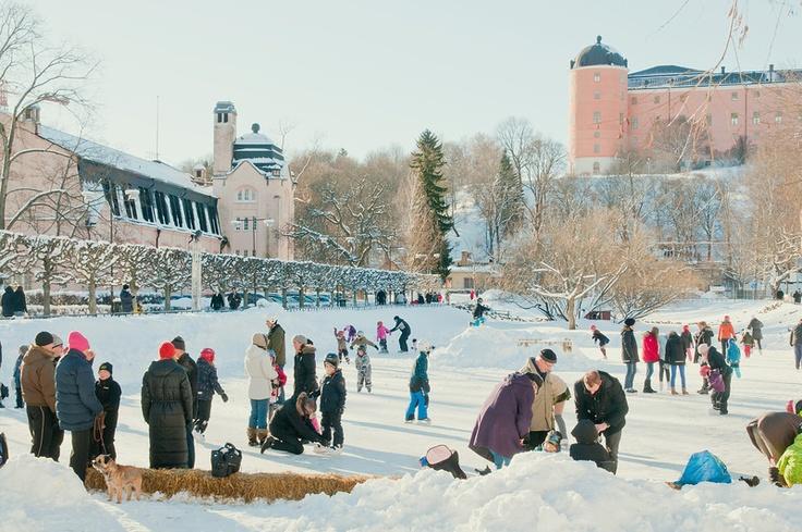 Vinter vid Svandammen © Klas-Herman Lundgren
