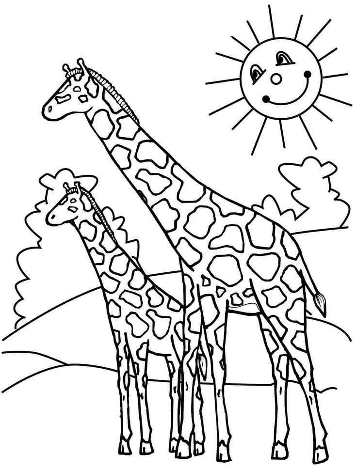 46 best Giraffes images on Pinterest  Giraffes Coloring and Cute