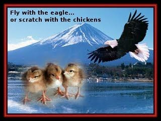 Zenquote: Fly with the eagle ...or scratch with the chickens