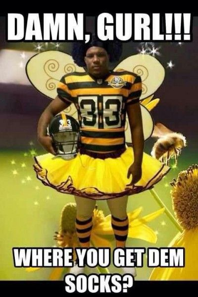 7812c4380b3e503509e079fedf561aa0 steelers live steelers stuff 13 best steelers suck images on pinterest nfl memes, pittsburgh,Cowboys Beat Steelers Meme