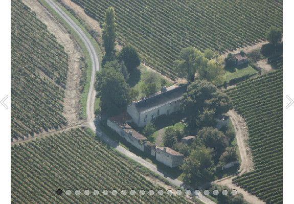 PhotoSnack   Loire Wine Tours at La Grande Maison Loire by Micaela Frow