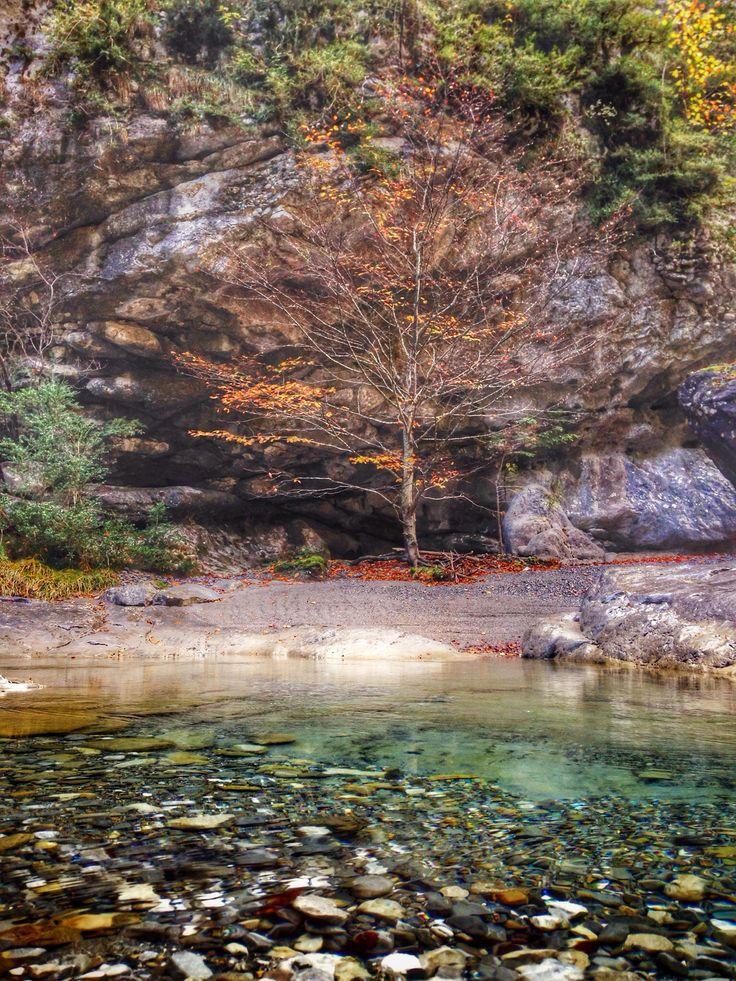 Autumn colors... El cañón de Añisclo (Huesca)