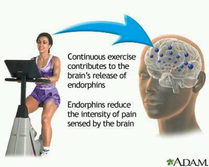 Adicto neurology pinterest
