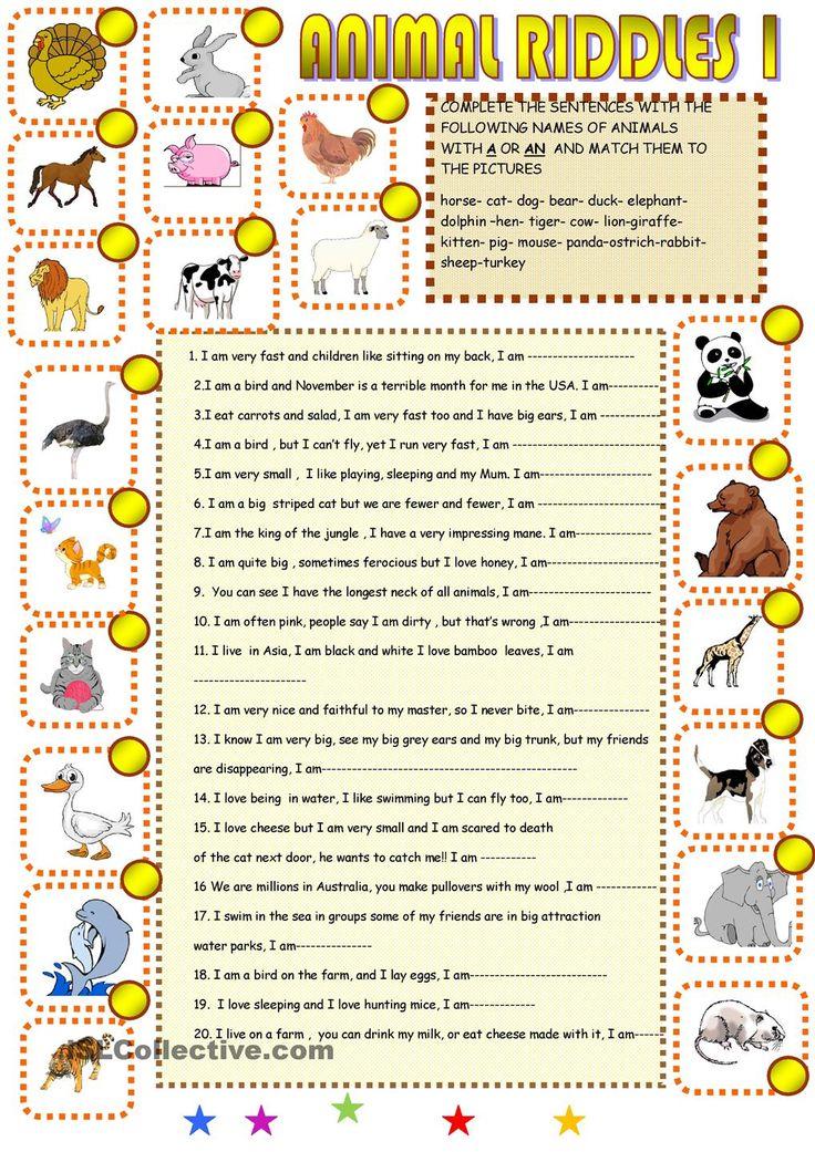 Animal riddles Animal riddles, Riddles, Learn english