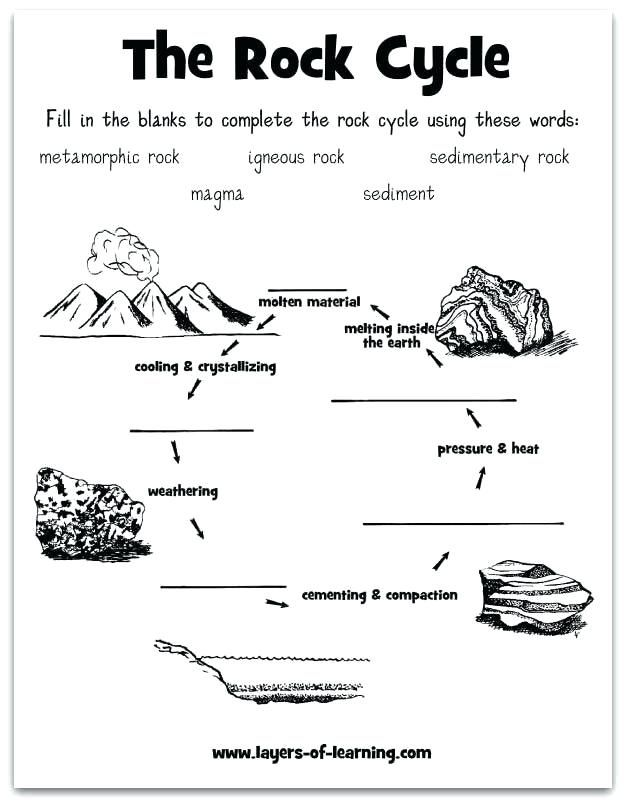 Water Cycle Quiz Google Search Science Worksheets Free Science Worksheets Rock Cycle