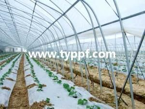 Multi Layer Greenhouse cover film,find complete details about Multi Layer Greenhouse cover film,greenhouse cover film,pe greenhouse cover film, plastic greenhouse film-Su Qian Sid Import and Export Co.,Ltd