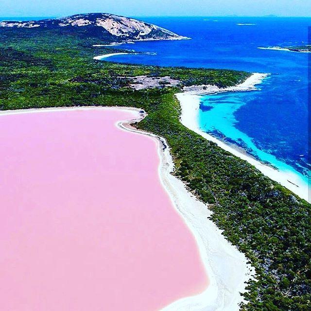 Étonnant ce lac rose en Australie................................................................................................................................................................................................................................................................................#queensland #summerlife #travel #sydney #tourist #kangourou #travelgram #instagood #oceanie #surfersparadise #adventure #goldcoast #wallabie #backpacker #aussie #voyage #trip #traveling…