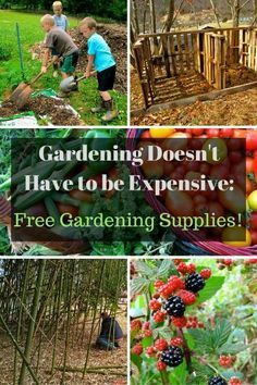 gardening supplies you can get for free