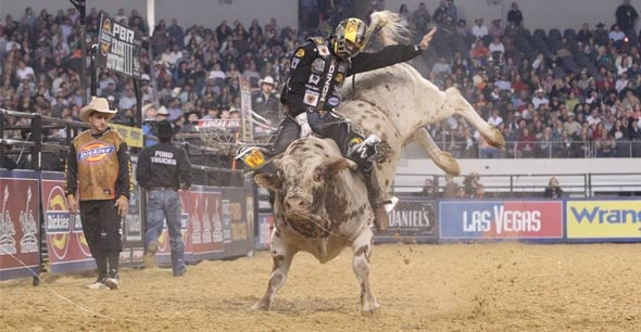 WILD RIDE: Luke Snyder takes life by the horns.