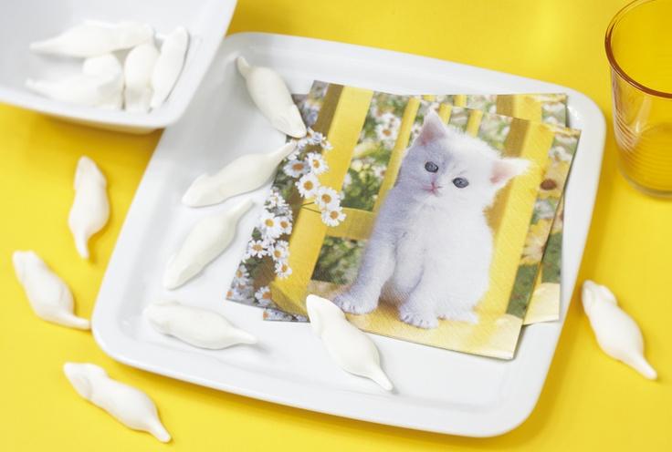 Paper + Design napkin - So white kitten