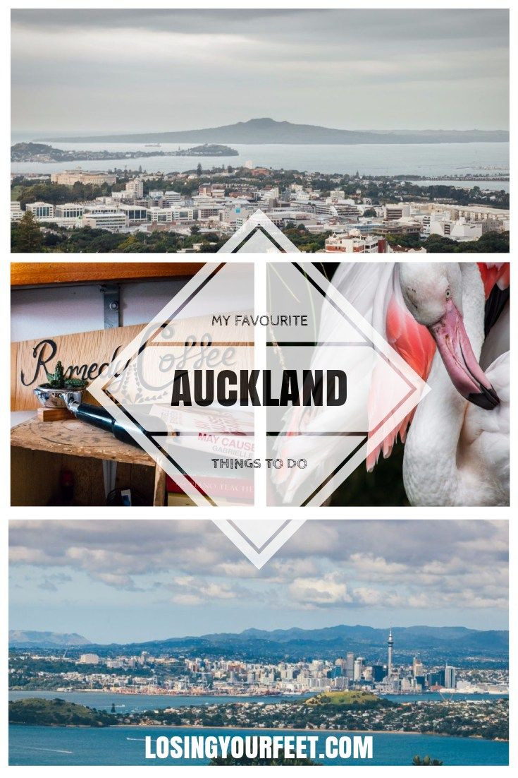 Think Auckland is boring and bland? Think again! Check out my list of favourite things to do in the City of Sails and have an awesome trip!