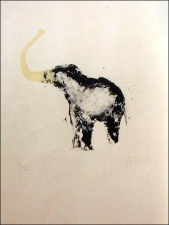 Miquel Barceló. Elefante