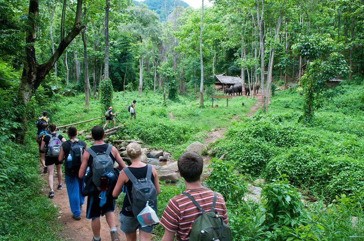 Trekking, Chiang Mai