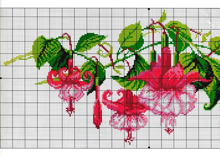Fuchsia Cross Stitch Chart (1)